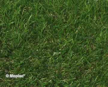 Prezzi erba sintetica ed accessori per la posa for Prato sintetico listino